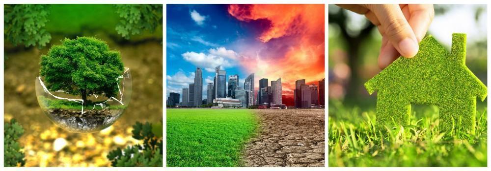 День Земли: история возникновения праздника