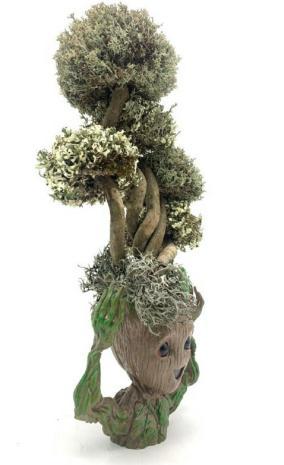 Фантастический Грут с деревом из цетрарии, 37 см от 10 090 руб