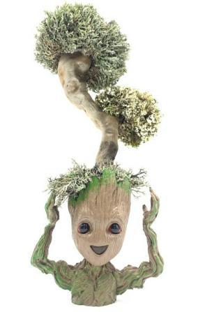 Фантастический Грут с деревом из цетрарии, 38 см от 9 090 руб