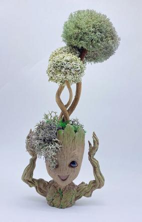 "Дерево из Цетрарии в кашпо ""Грут"", 39 см от 8 700 руб"