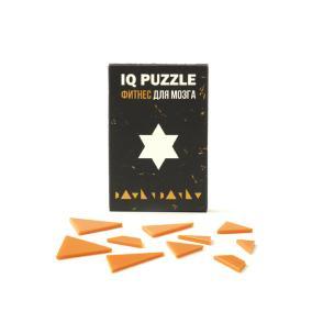 IQ PUZZLE Звезда Давида ( 10 деталей) от 250 руб